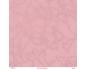 Pink de elena roche