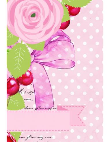 Elena Roche - Pink Vellum Cards